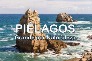 Piélagos-2