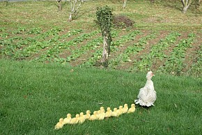 AGROTURISMO UXARTE